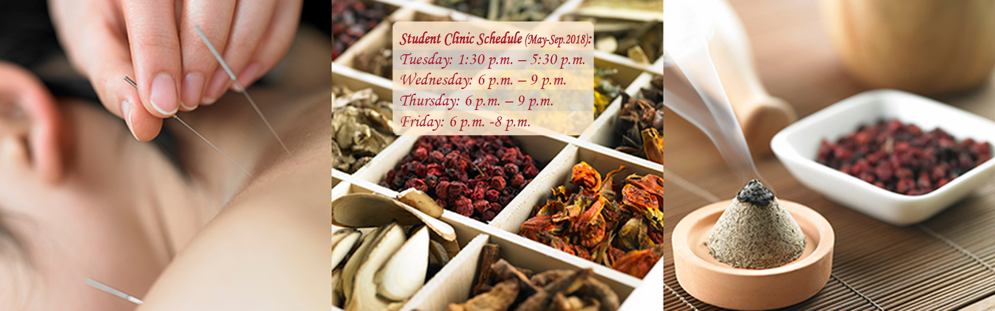 Canadian College of Traditional Chinese Medicine